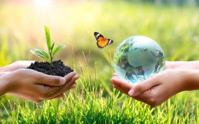 Quelques astuces à votre portée pour protéger la nature